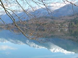 Bohinjer See im Fruehjahr