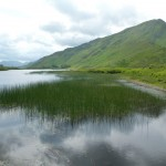 Connemara – das Moor tut seine Schuldigkeit, das Moor wird gehen!