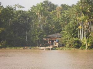 Kleine Holzhütte im Dschungel