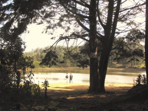 Parque Arvi - Groser Naturpark mit schoenen Wanderwegen