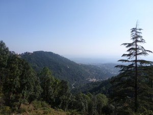 Blick von Bhagsu nach Dharamsala