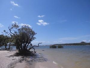 Am Strand von Alter do Chao